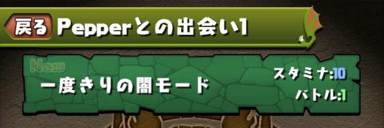 Pepperダンジョンの内容01