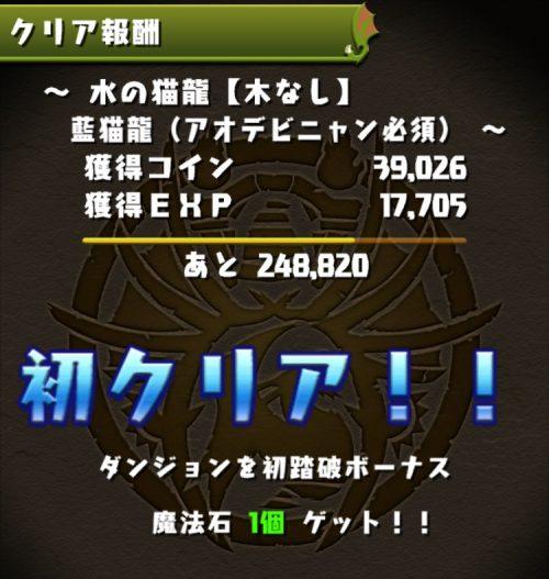 水の猫龍【木なし】攻略05
