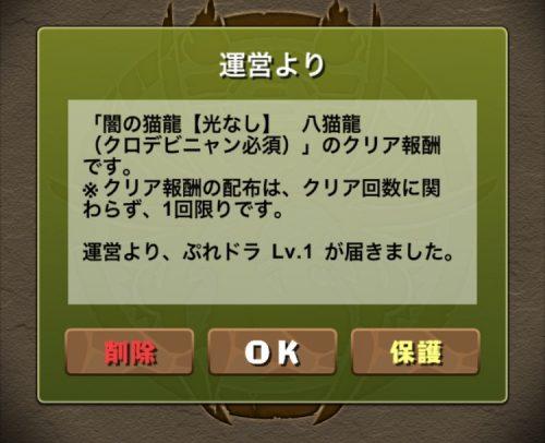 闇の猫龍【光なし】攻略09
