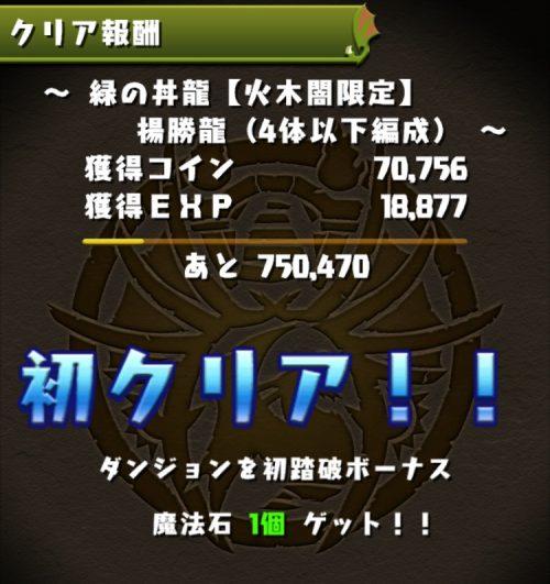 緑の丼龍【火木闇限定】攻略08