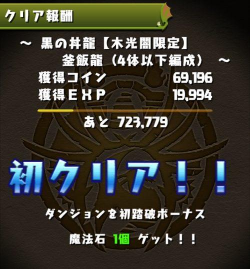 黒の丼龍【木光闇限定】攻略08