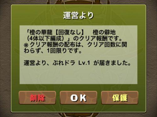 橙の華龍【回復なし】攻略09